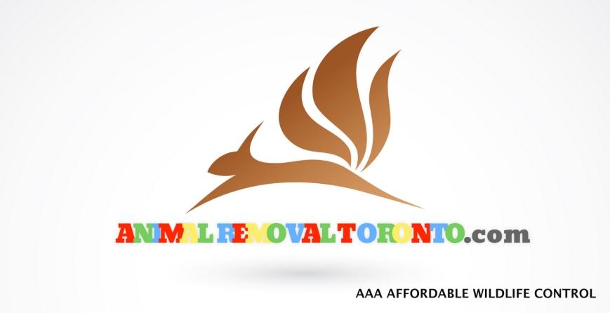 1-animal-removal-toronto-logo